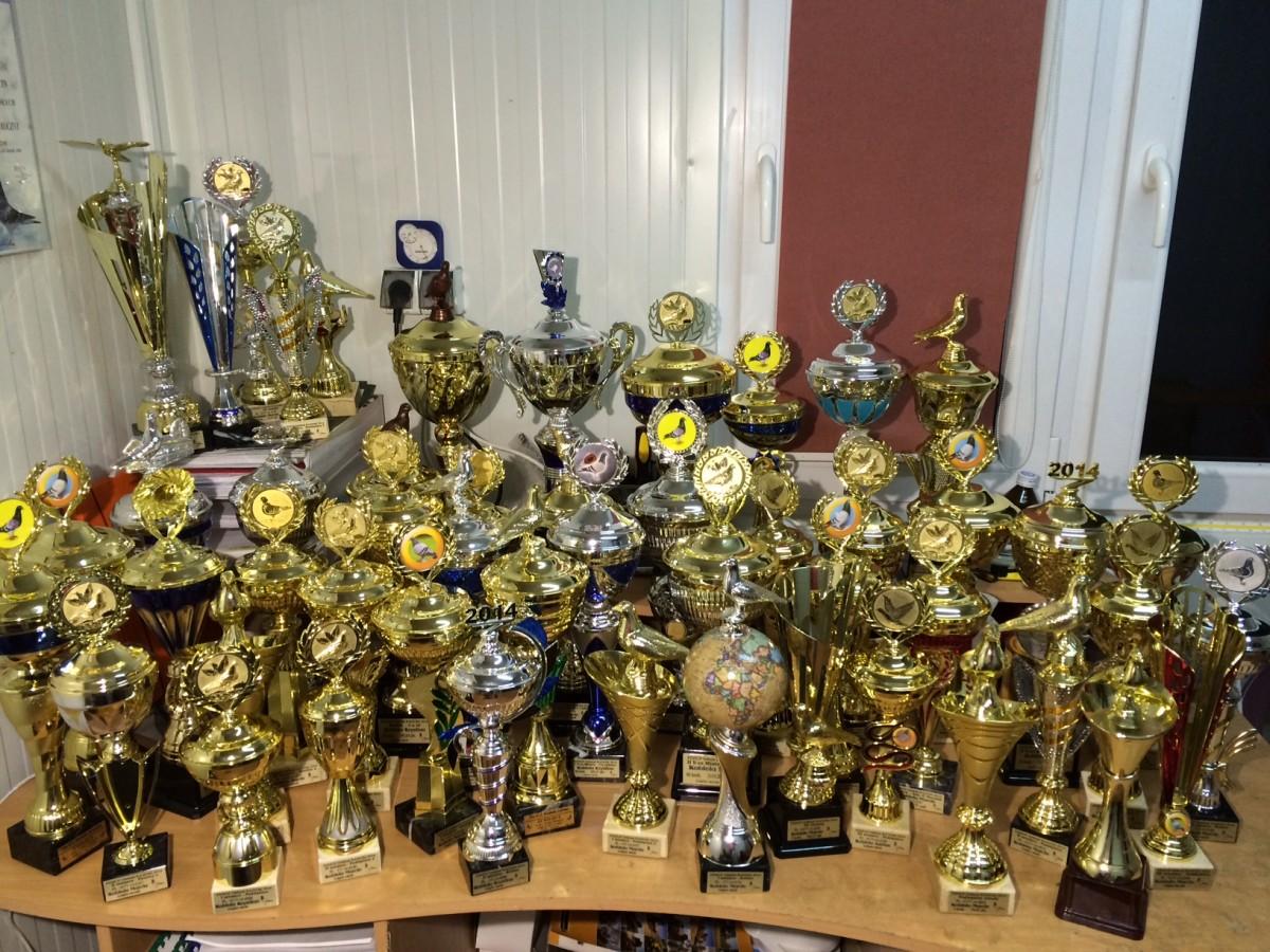 Puchary zdobyte w sezonie 2014r